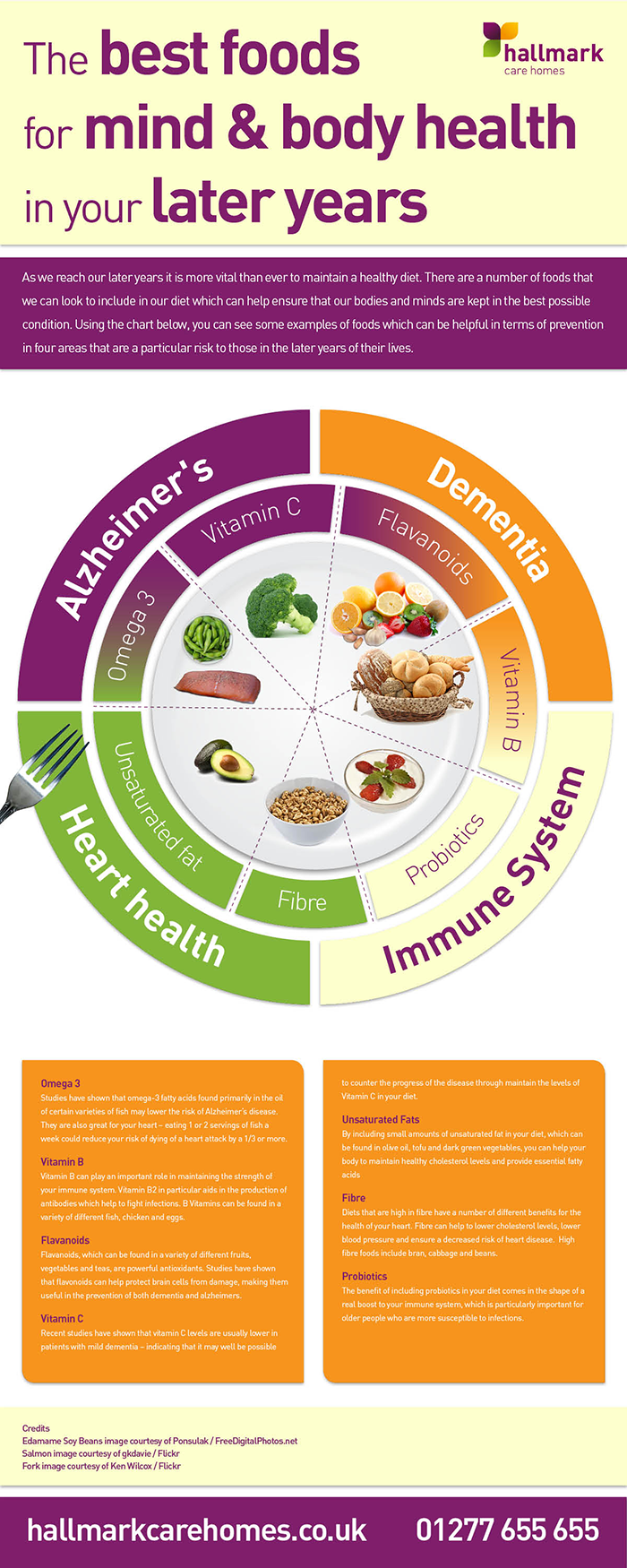 hallmark_best_foods_infographic_resized_0e6df0a85aed20066a51f4a776f8a343